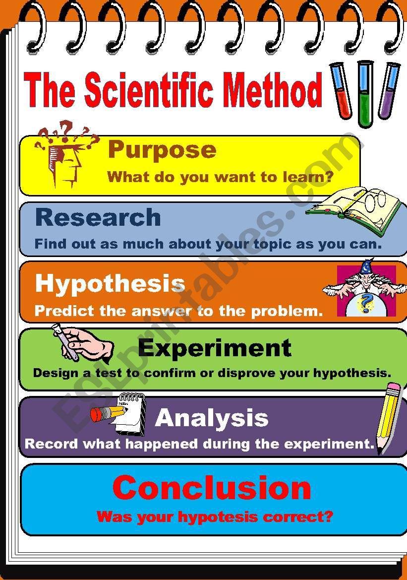 The Scientific Method - ESL worksheet by teacherjorgesanchez Within Scientific Method Worksheet Elementary