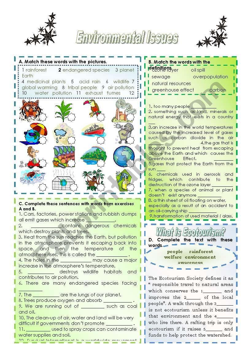 ENVIRONMENTAL PROBLEMS worksheet