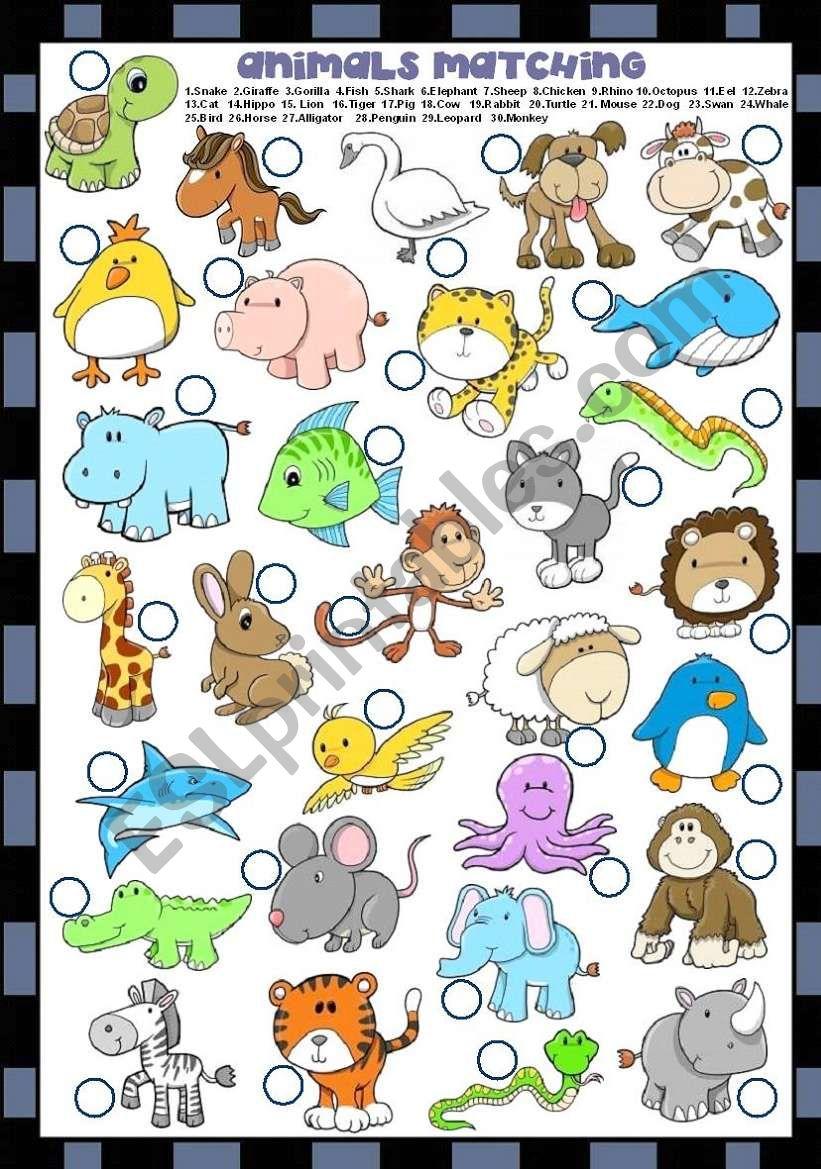 ANIMALS MATCHING  worksheet