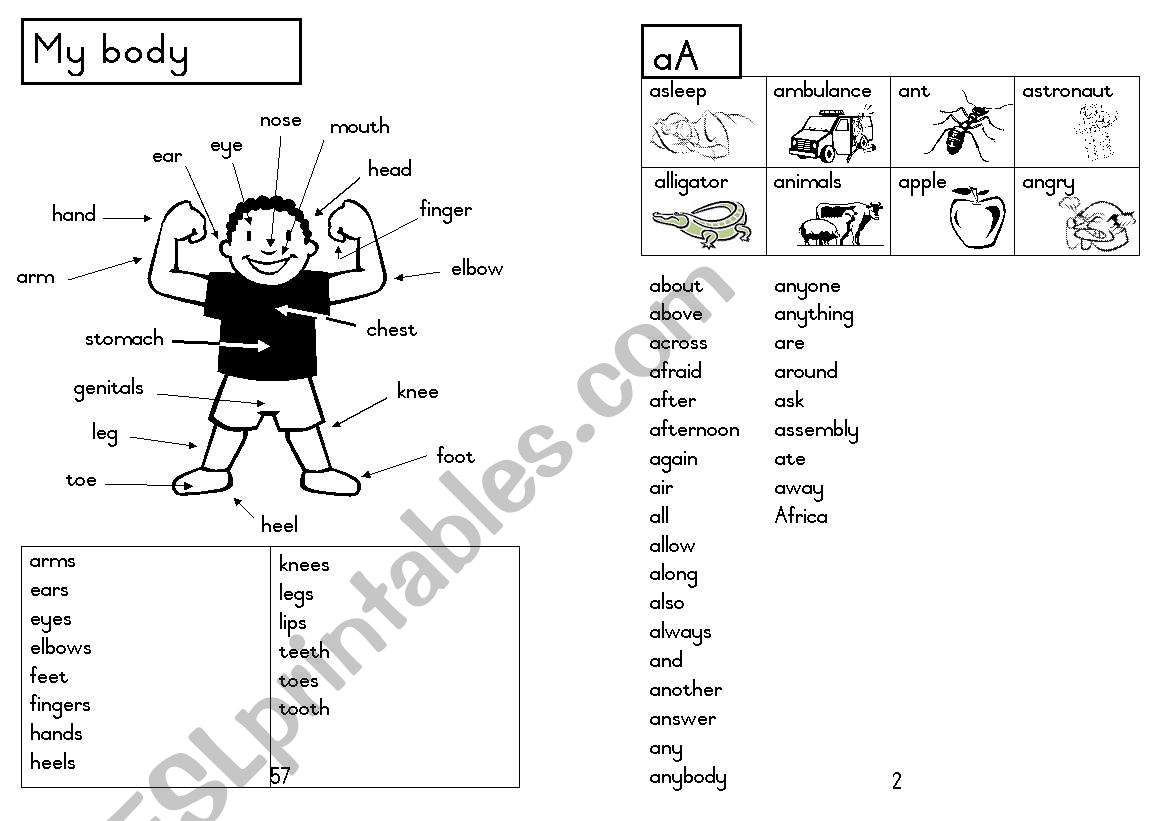 A5 Picture dictionary 3 worksheet