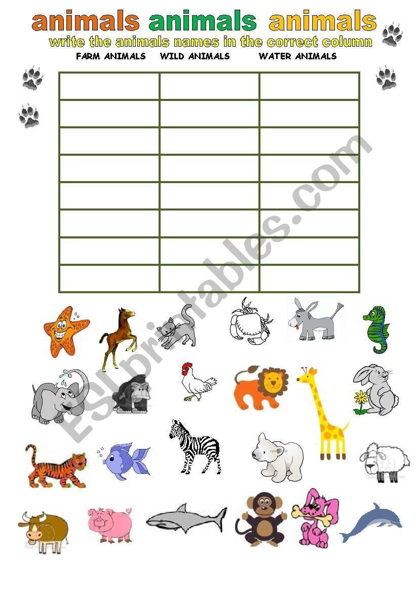 categorize animals esl worksheet by adva. Black Bedroom Furniture Sets. Home Design Ideas