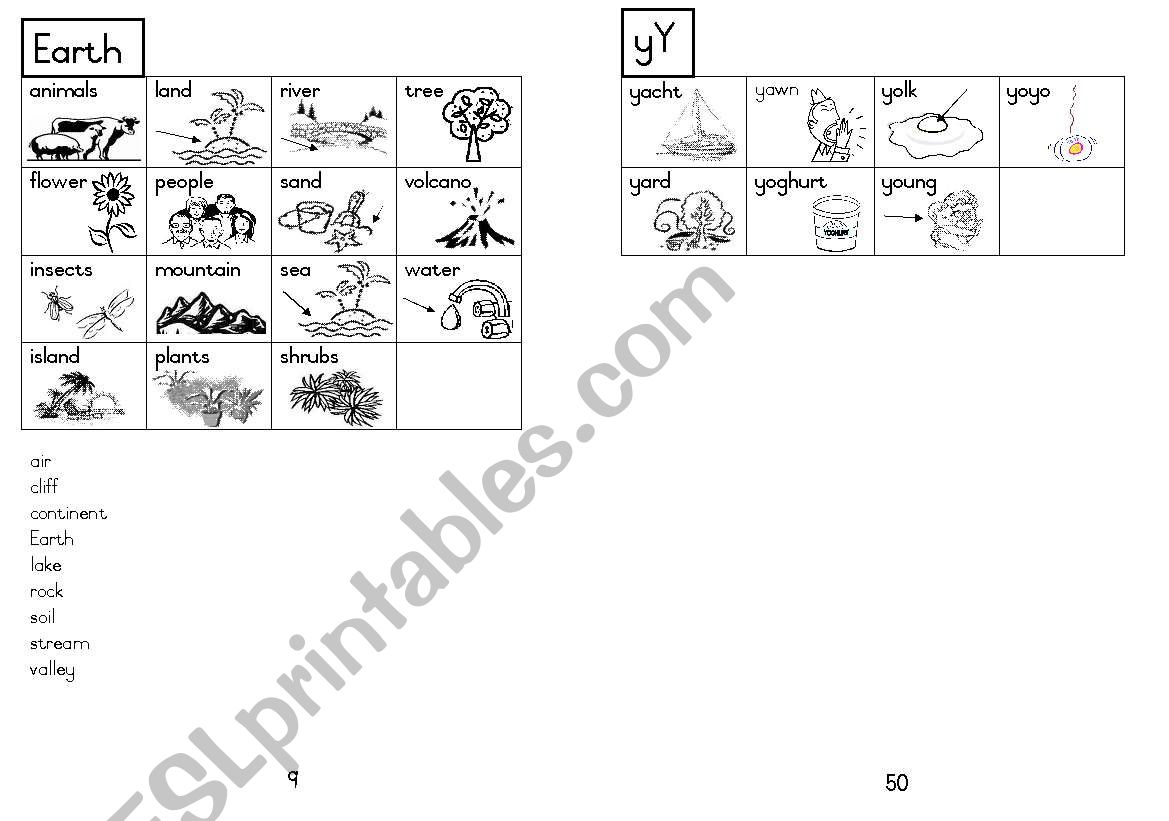 A5 Picture Dictionary 10 worksheet