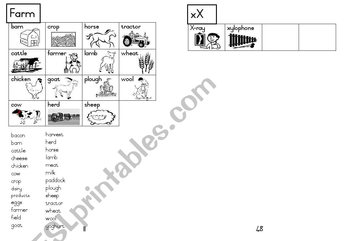 A5 Picture Dictionary 12 worksheet
