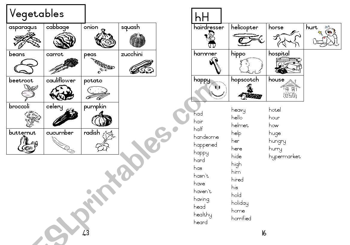 A5 Picture Dictionary 17 worksheet