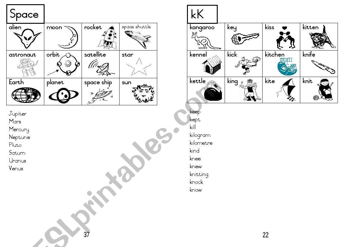 A5 Picture Dictionary 23 worksheet