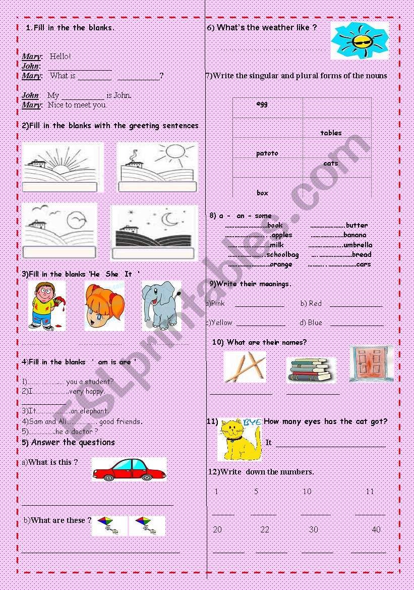 test  for  beginners  worksheet