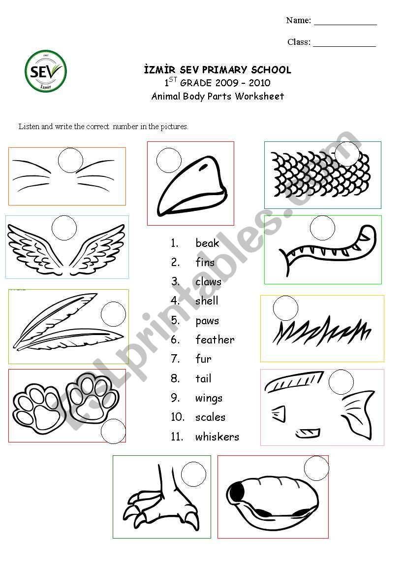 animal body parts esl worksheet by kaddaniels. Black Bedroom Furniture Sets. Home Design Ideas