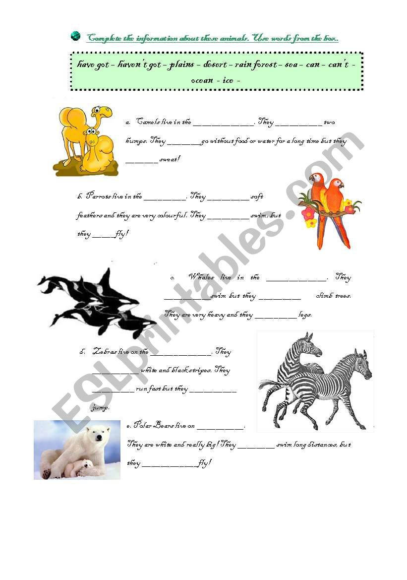 Animals! worksheet