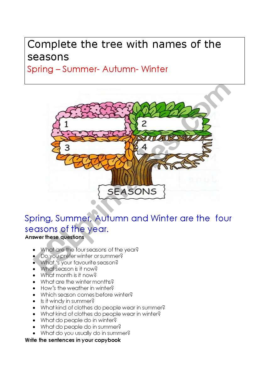 weather in summer in winter worksheet