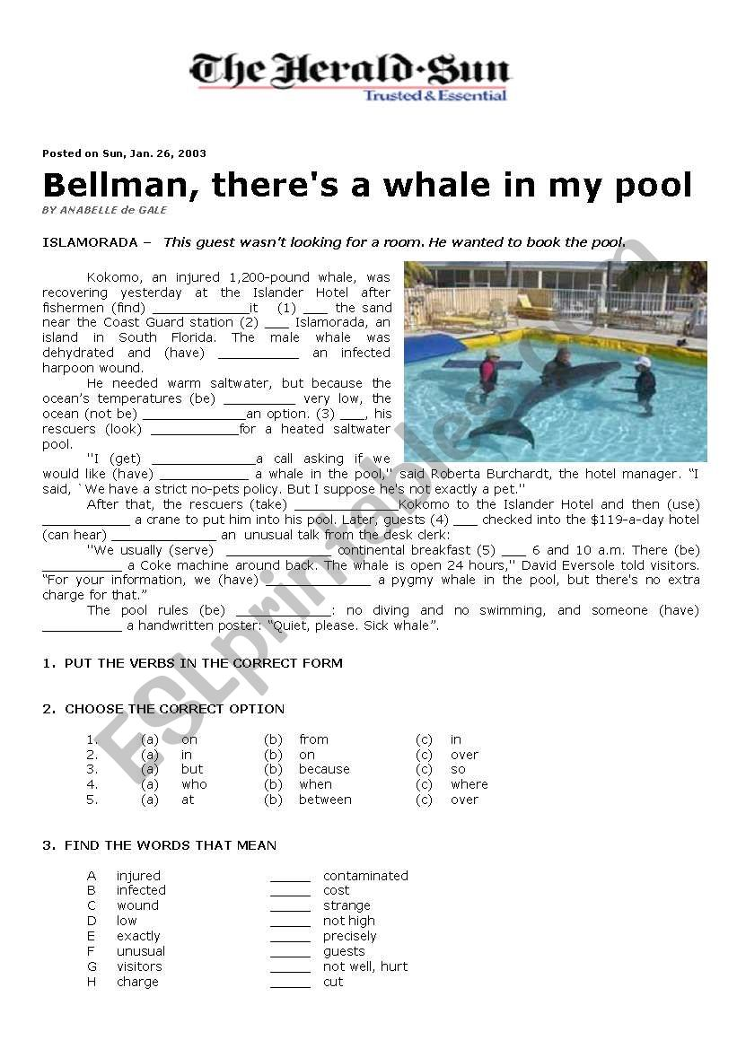 A Whale in My Pool worksheet