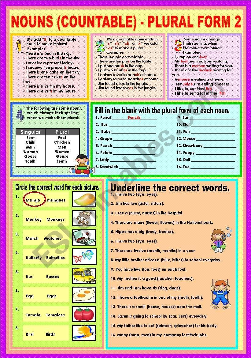 Nouns (countable) - Plural (Irregular) 2