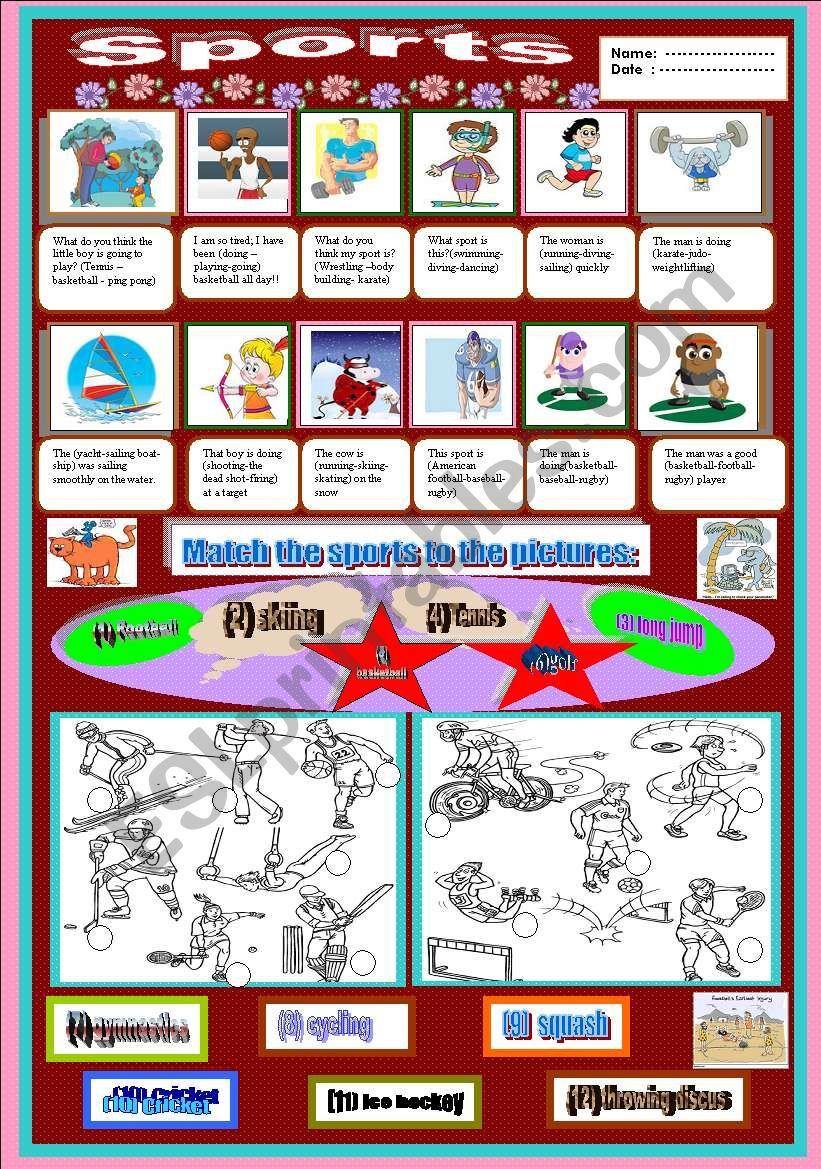 Sports  worksheet