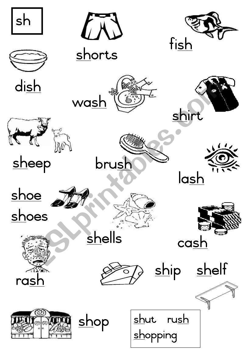 -sh Consonant diagraphs worksheet