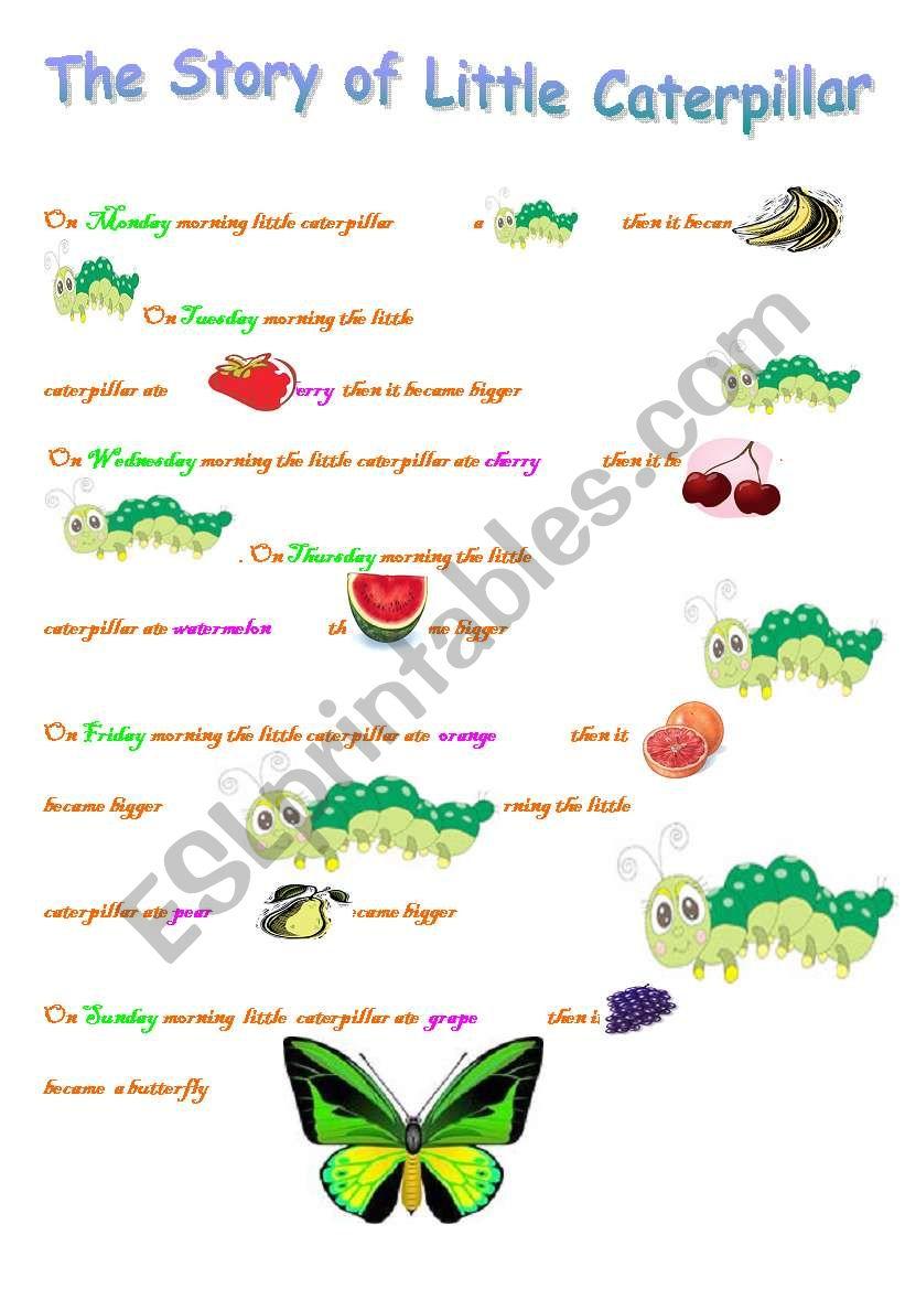 the story of little caterpillar