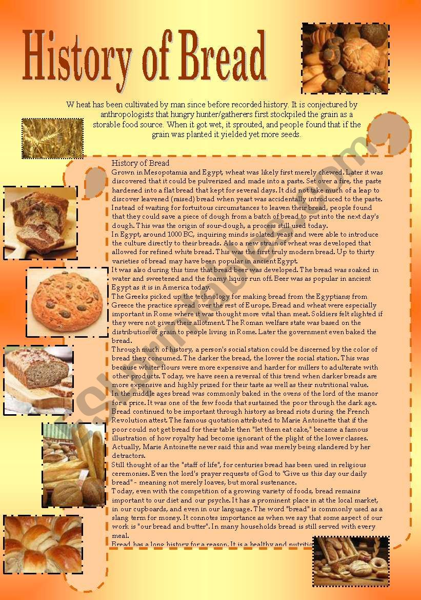 History of Bread 2 pages worksheet