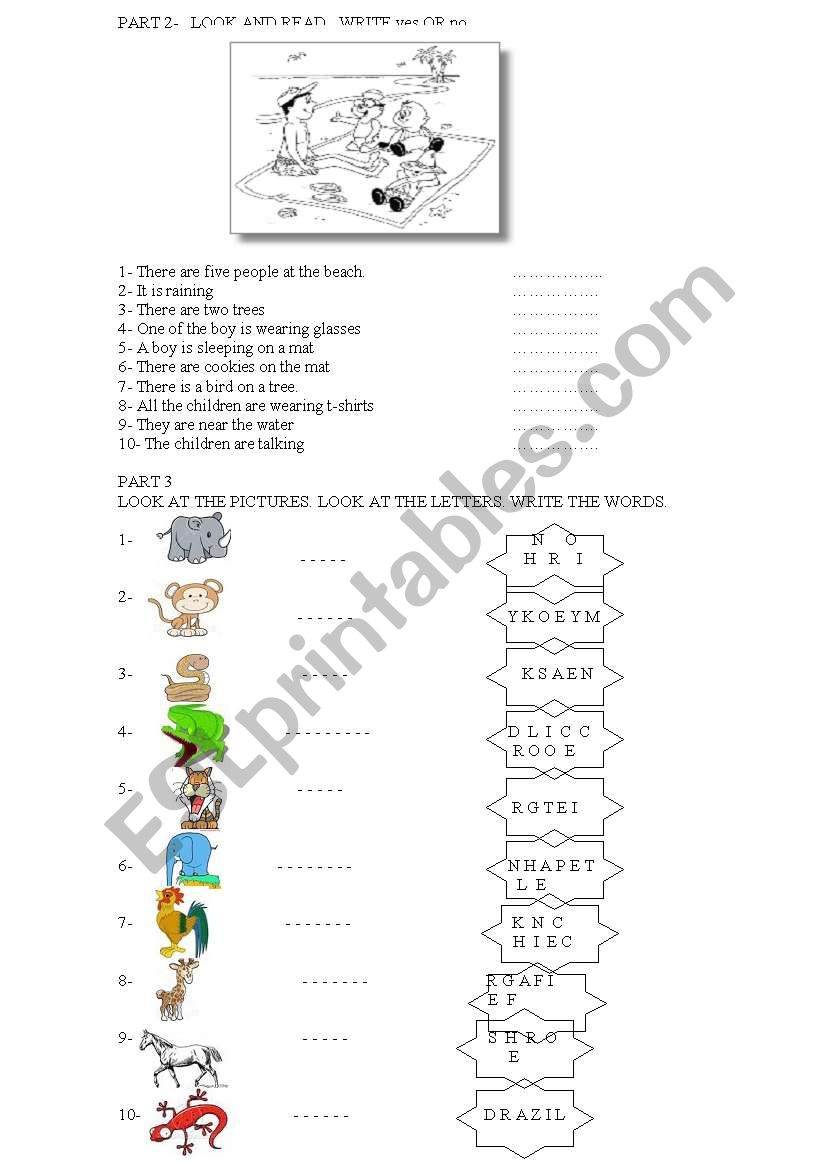 starters yle cambridge exams worksheet