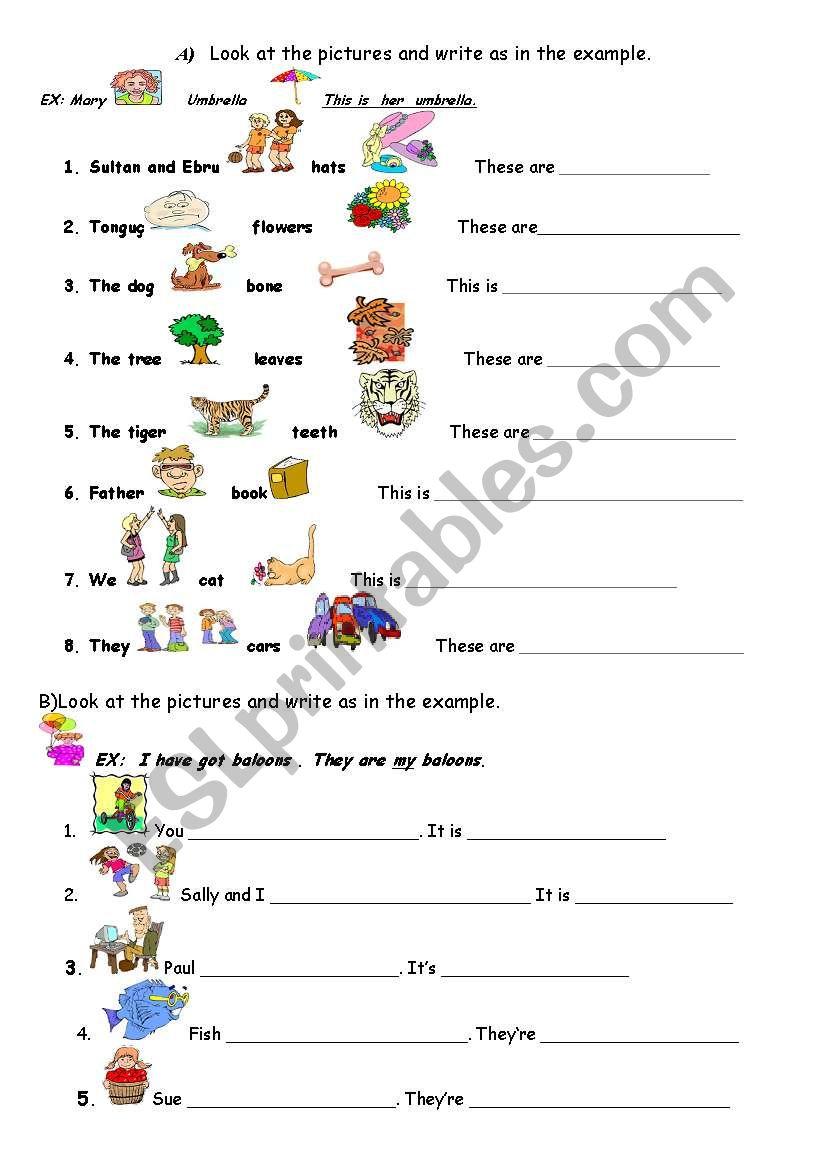 English Worksheets Possessive Adjectives