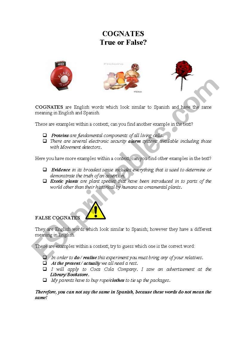 English Worksheets Cognates True Or False