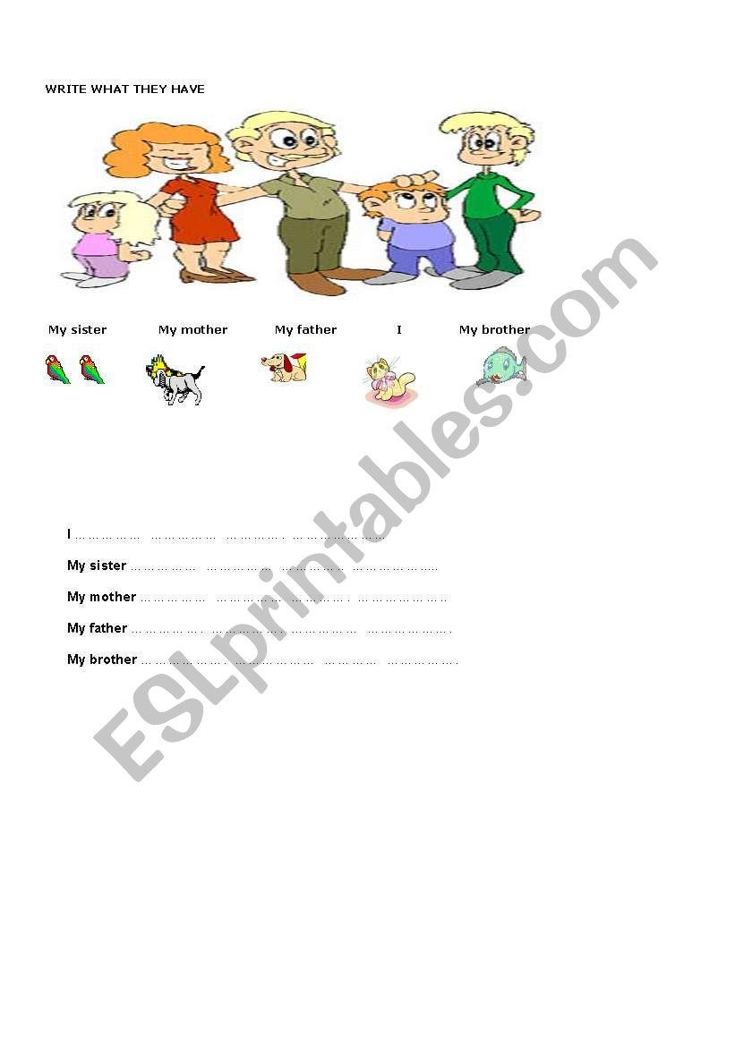 have got-has got worksheet