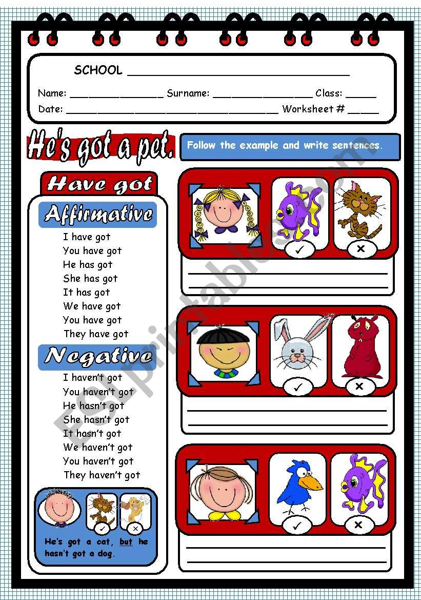 VERB TO HAVE GOT - AFFIRMATIVE AND NEGATIVE
