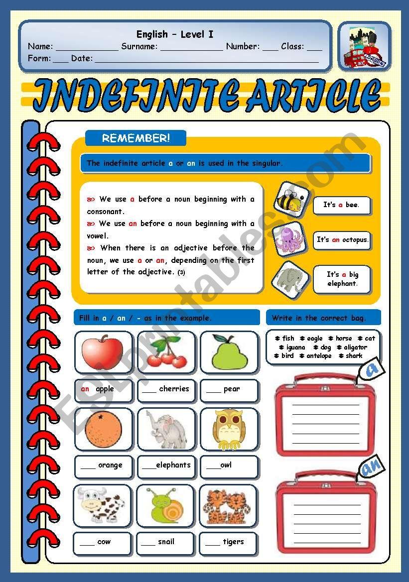 INDEFINITE ARTICLE worksheet