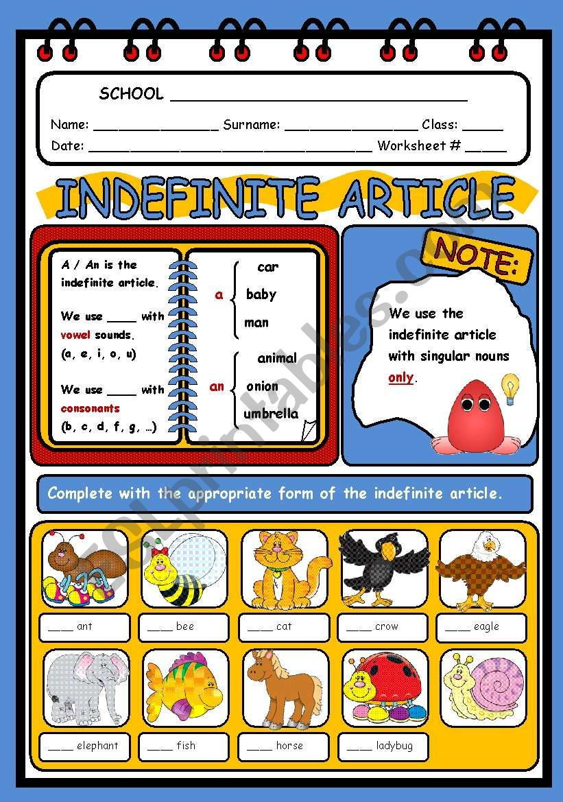 THE INDEFINITE ARTICLE worksheet