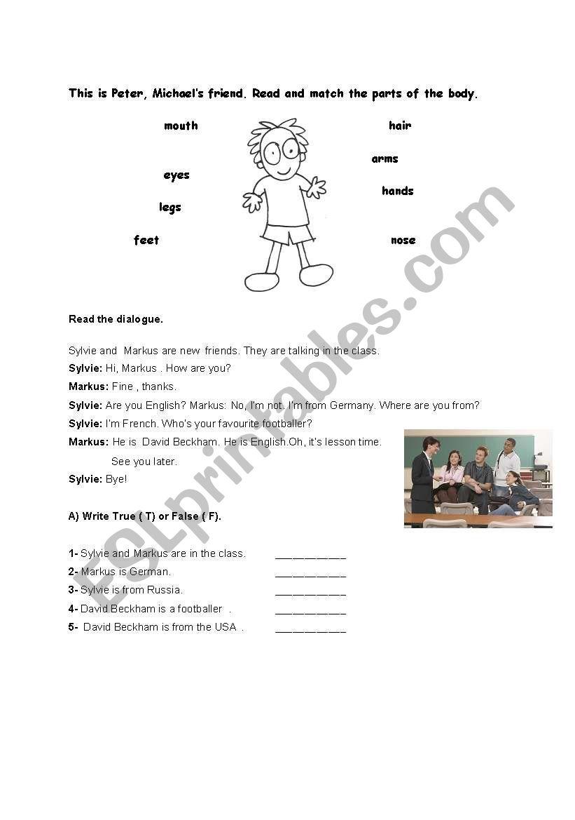 body parts- reading passage  worksheet