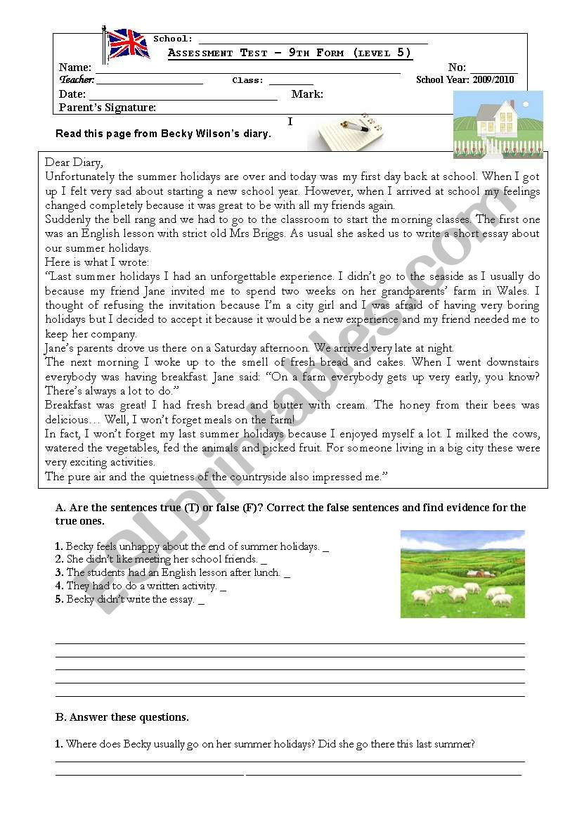 Holidays Diary test worksheet