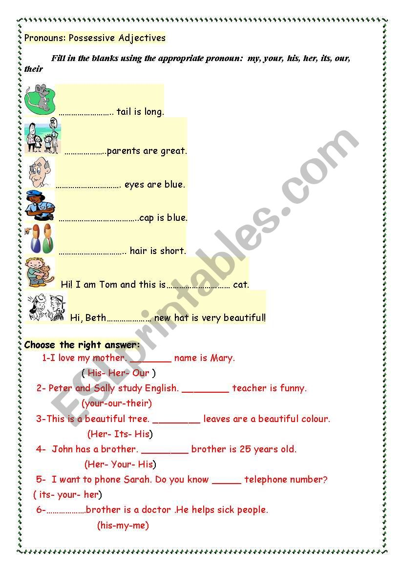 possessive adjectives exercises - ESL worksheet by dandanaonline