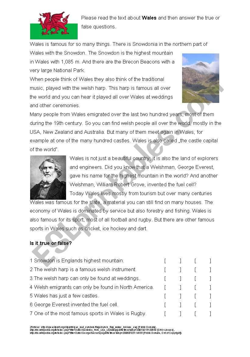 Reading Comprehension Wales worksheet