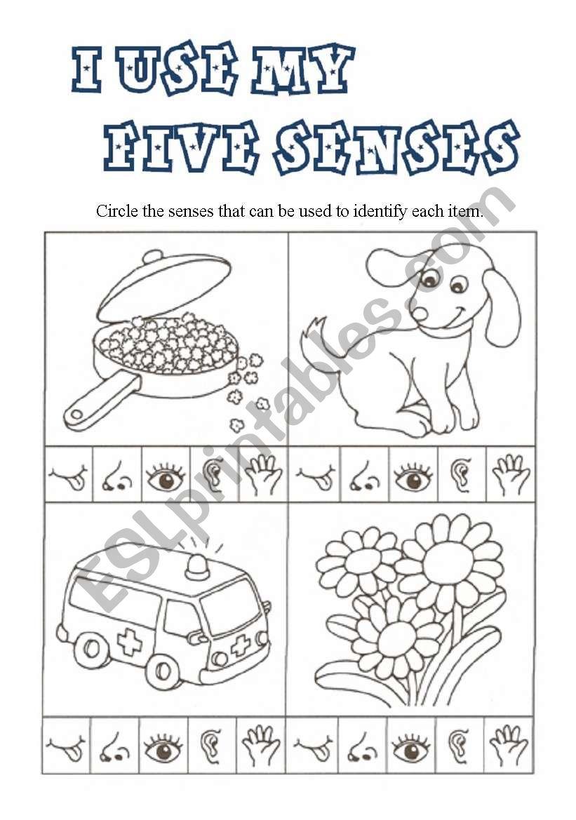 I use my FIVE SENSES worksheet