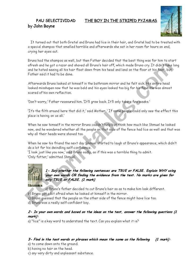 The Boy In The Striped Pyjamas Reading Writing Pau Selectividad Esl Worksheet By Margax