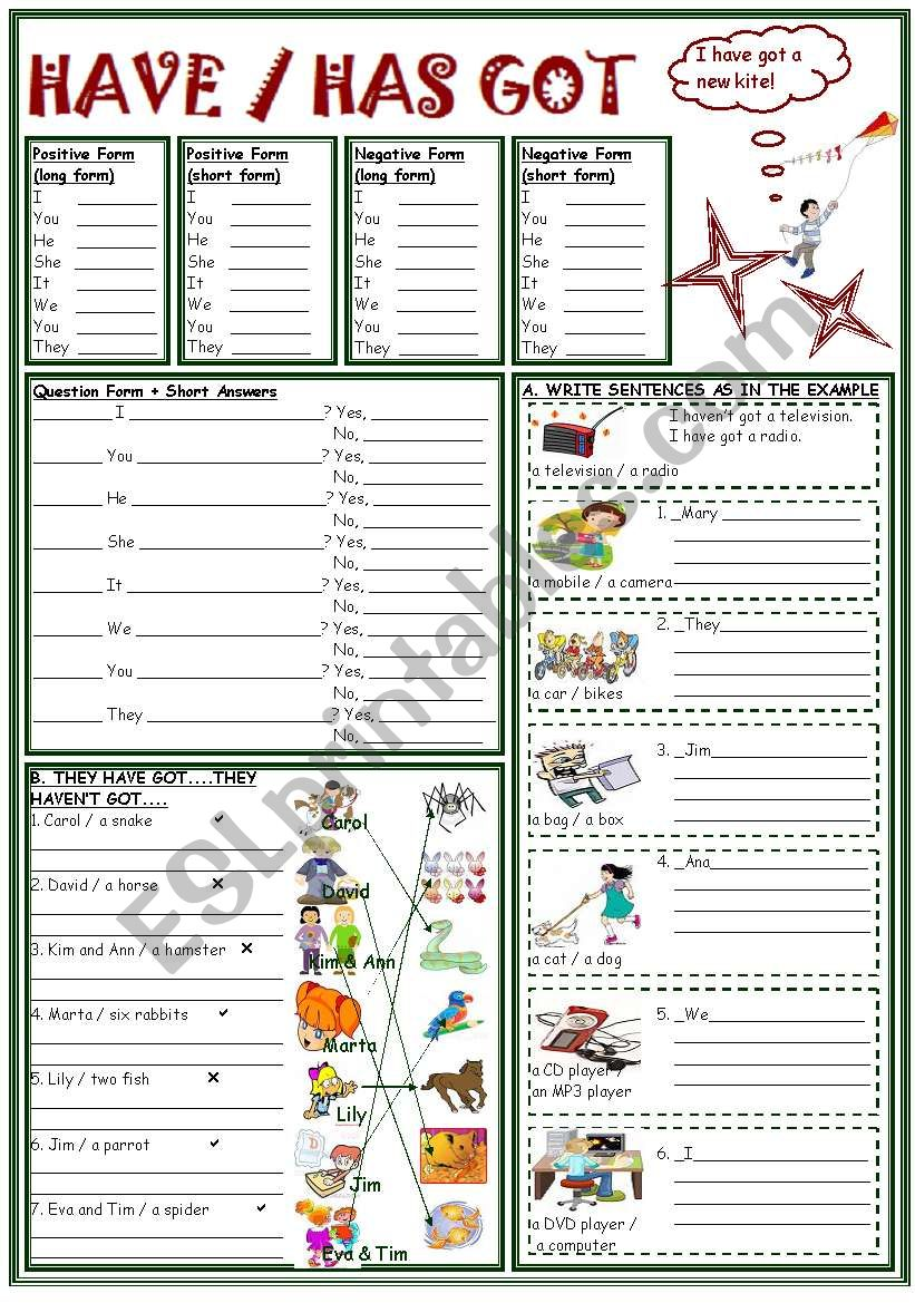 HAVE / HAS GOT PRACTICE worksheet