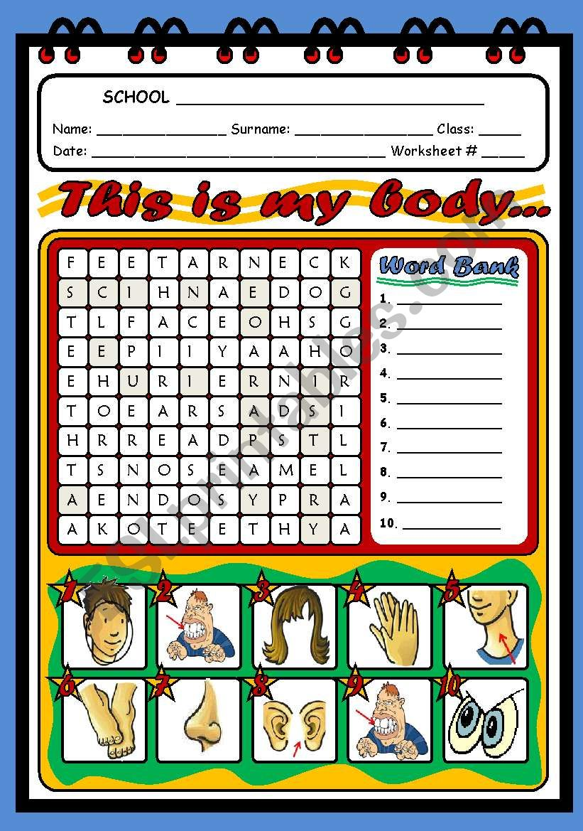 THIS IS MY BODY... worksheet