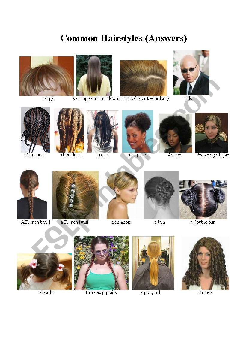 Names Of Common Hairstyles Esl Worksheet By Suzanne22