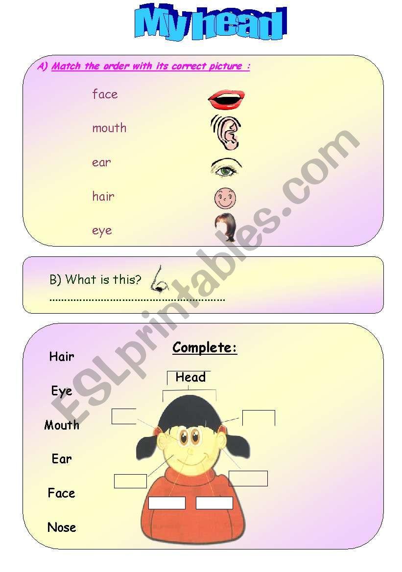 My Head worksheet