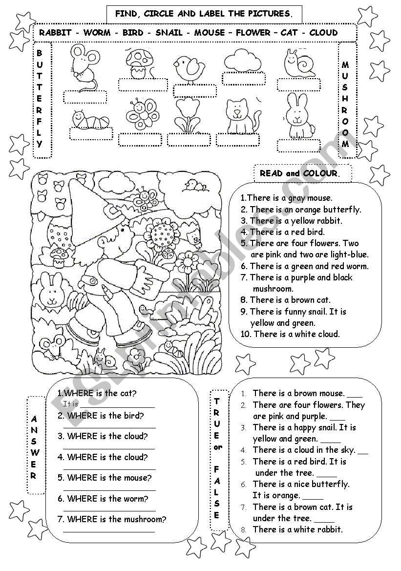 WHERE ARE THESE ANIMALS?? worksheet