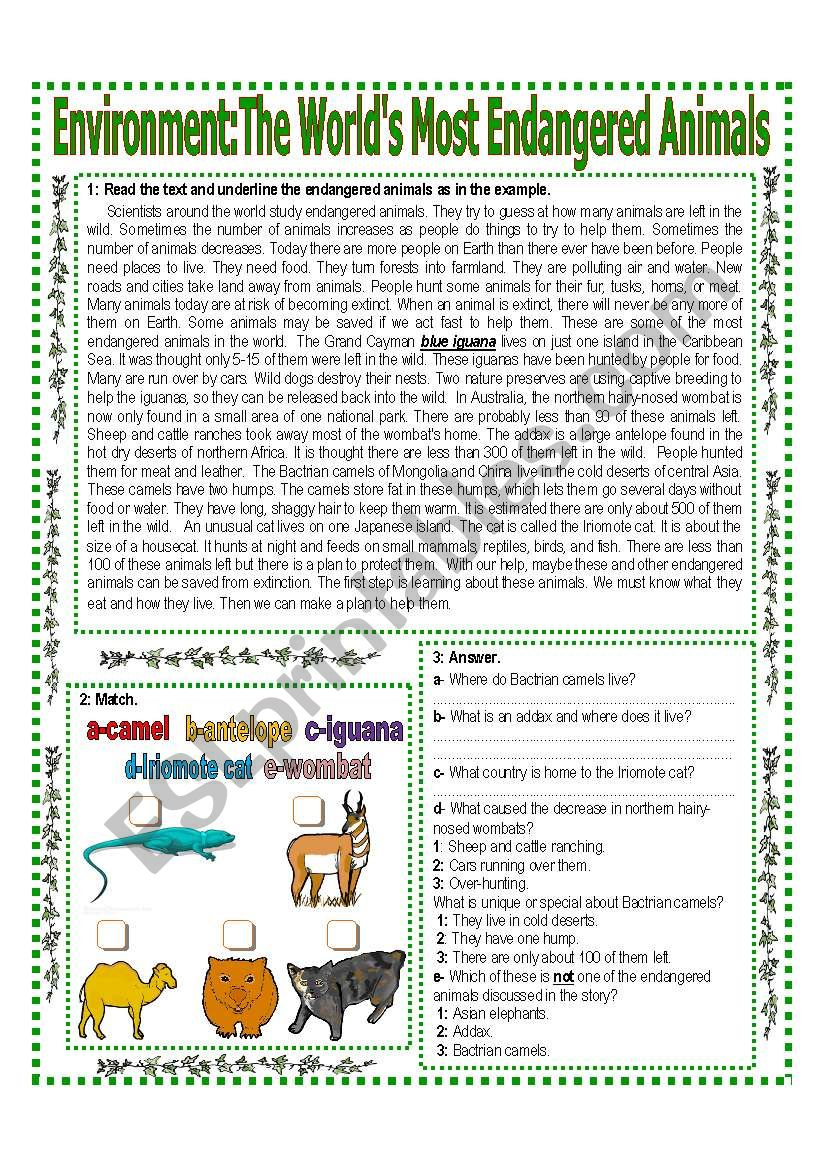 ENVIRONMENT (1/3) The World´s Most Endangered Animals Reading + Activities   Answer Key -  Elementary