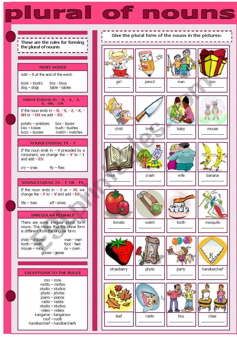 PLURAL OF NOUNS worksheet