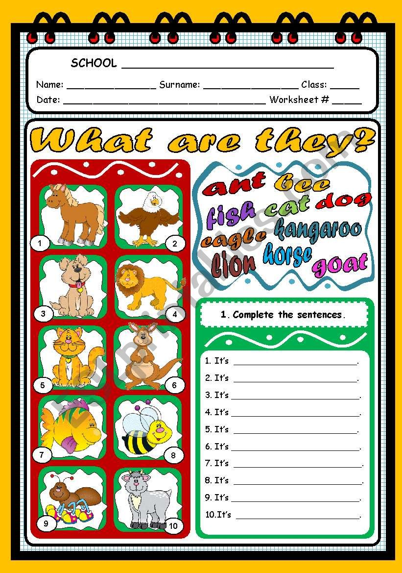 WHAT ARE THEY? (ANIMALS) worksheet