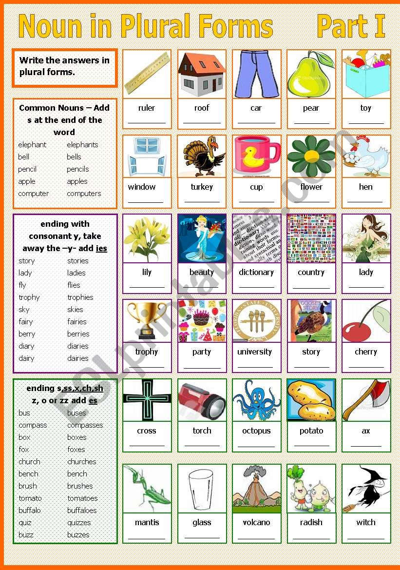 Noun in Plural Forms - Part I worksheet
