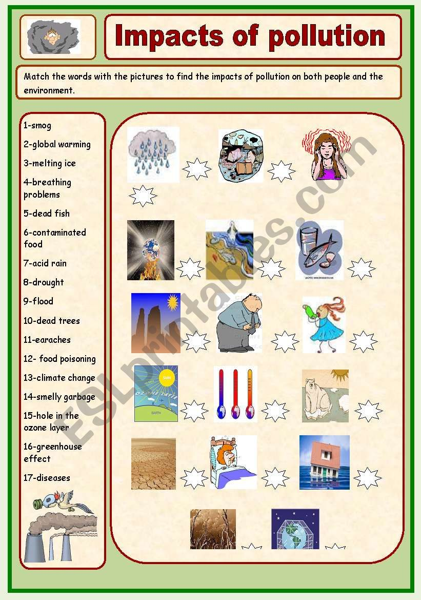 Impacts of pollution worksheet