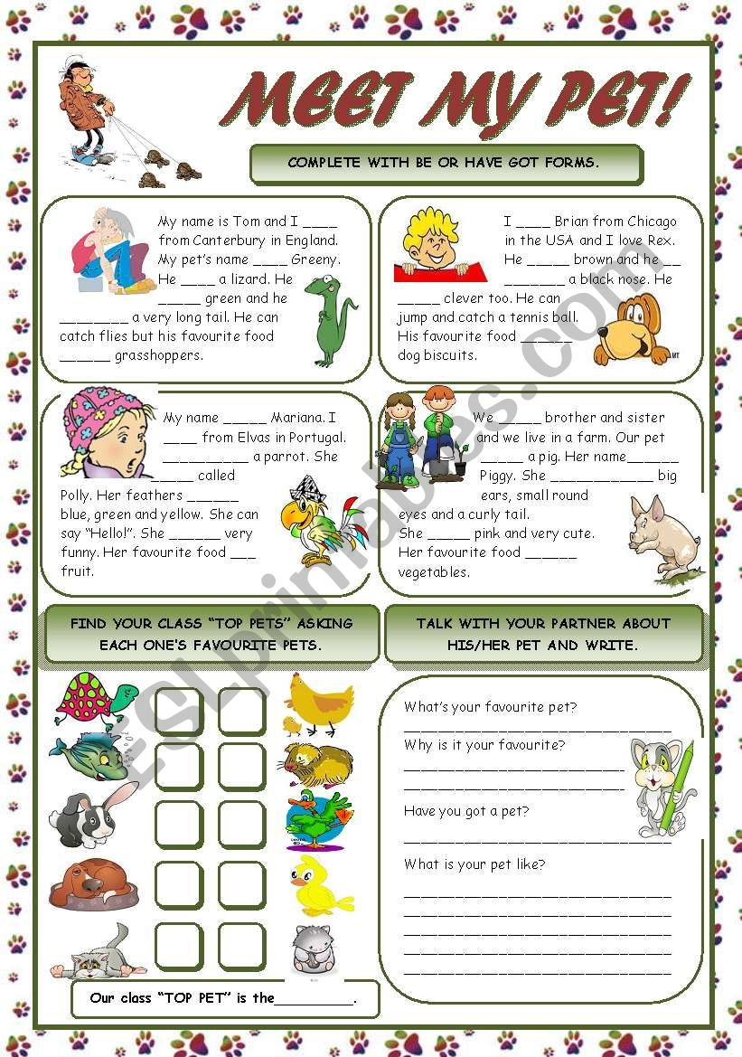 MEET MY PET! worksheet