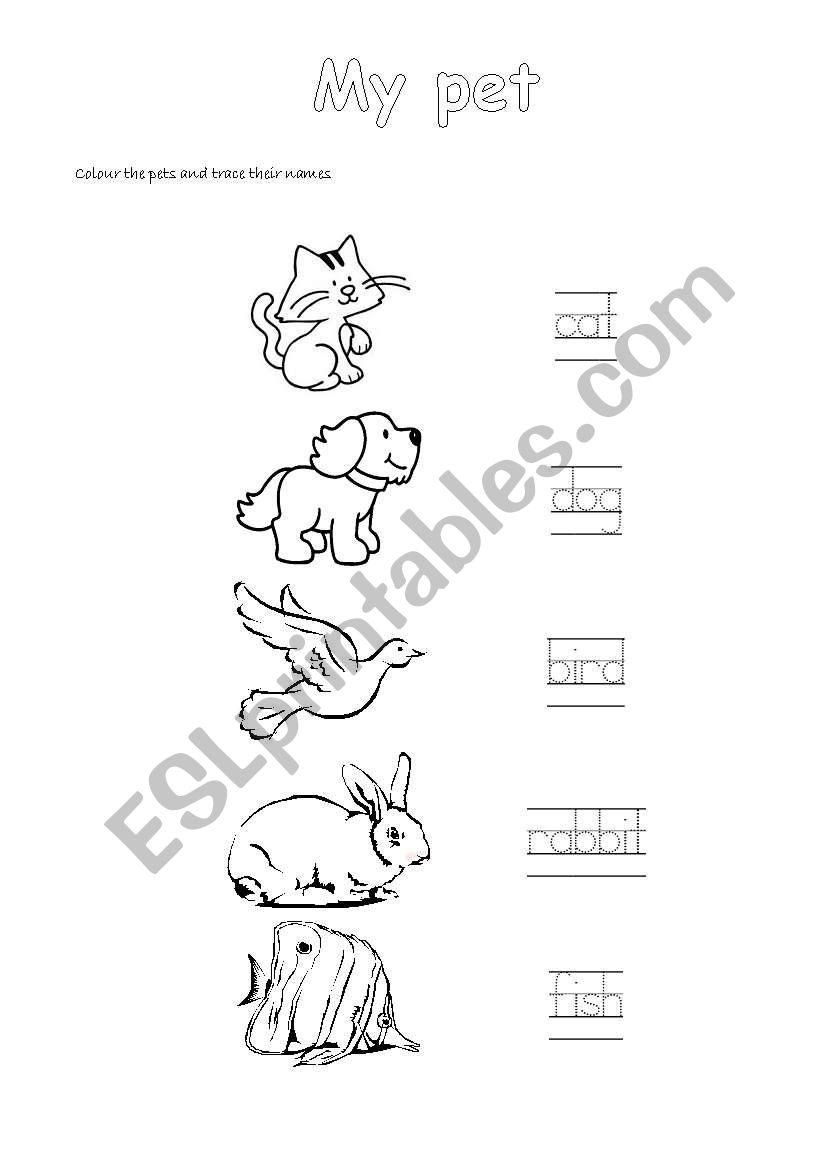 My pet ESL worksheet by Stepha