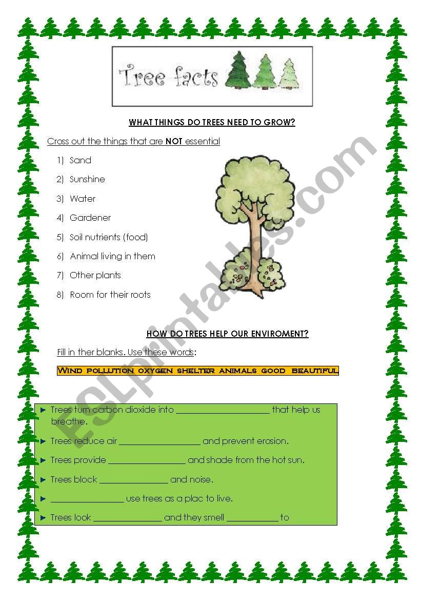 deforestation: why are trees important? 2