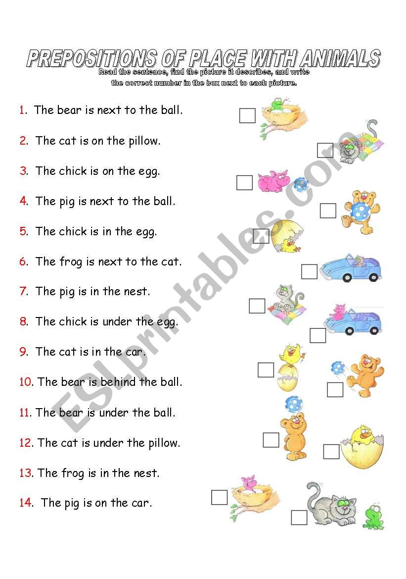 Prepositions Of Place With Animals Esl Worksheet By Kasuga