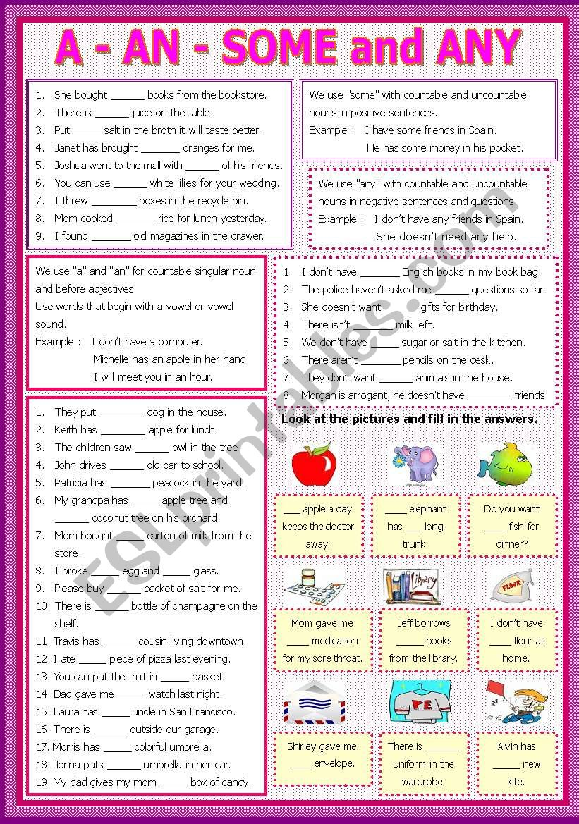 A - An - some - Any worksheet