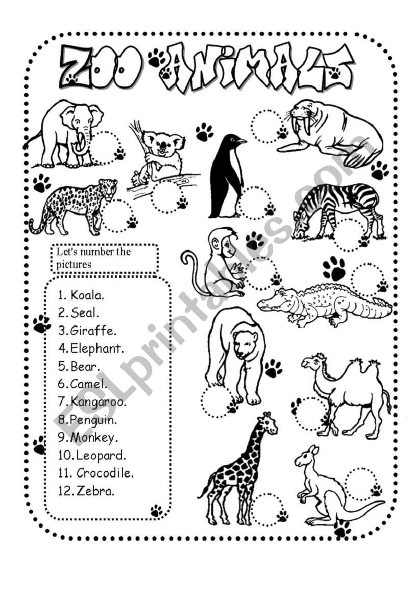 zoo animals esl worksheet by glamorous. Black Bedroom Furniture Sets. Home Design Ideas