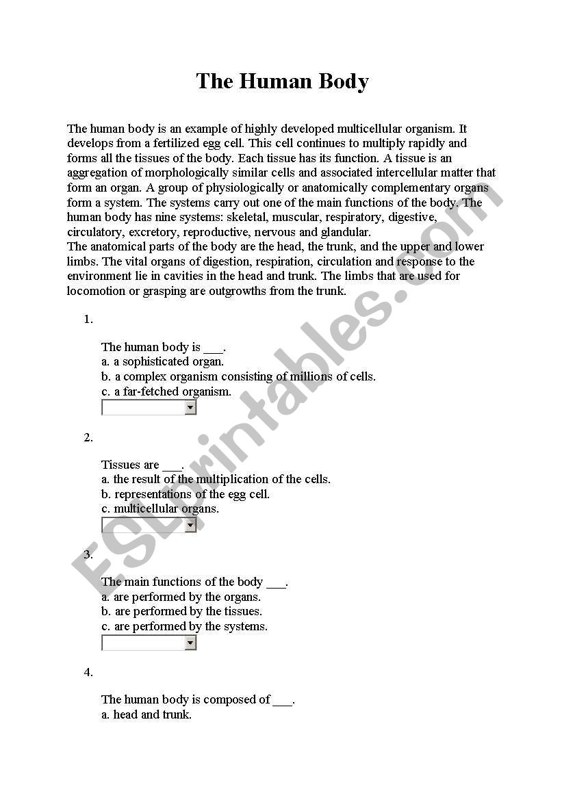 body parts reading worksheet