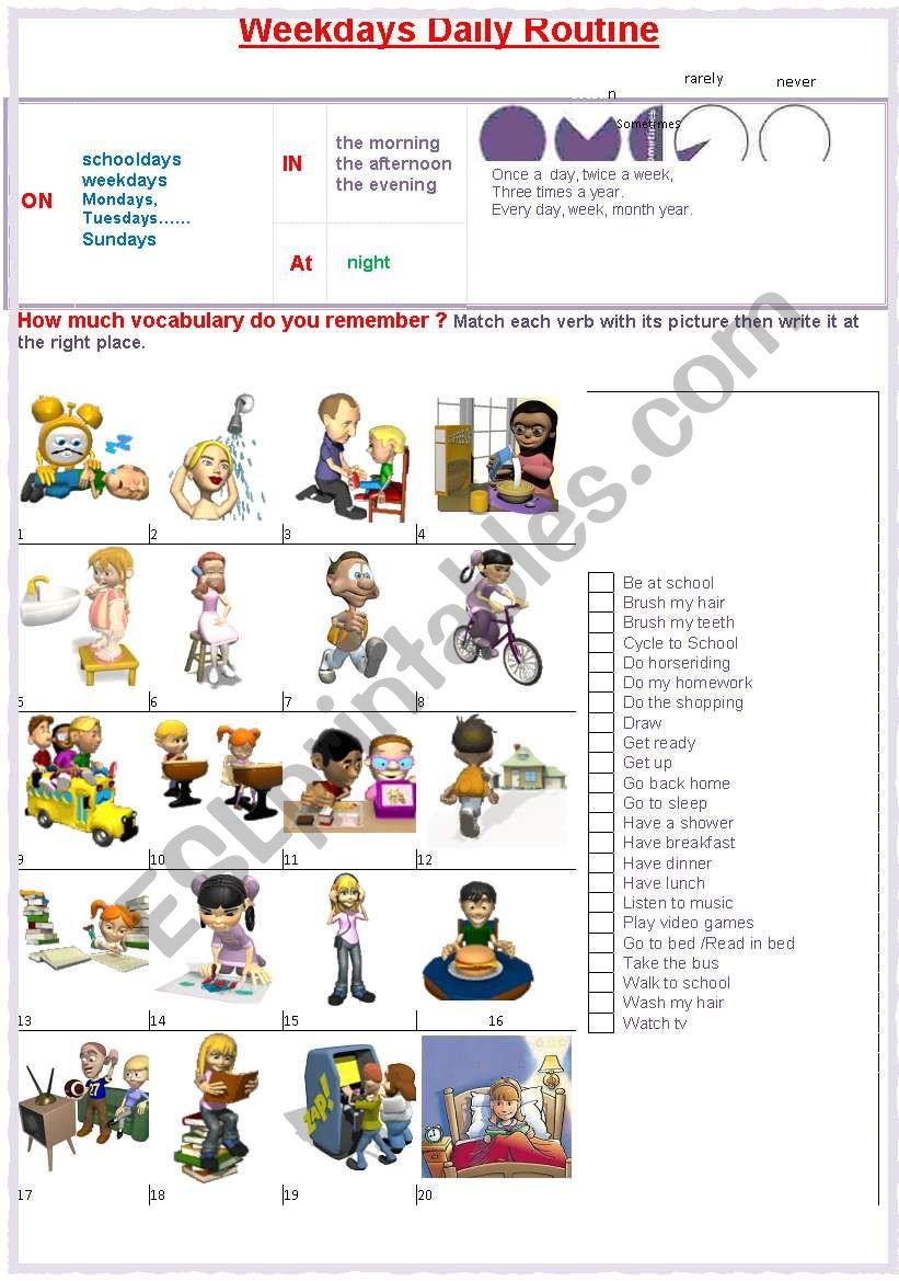 Schooldays daily routine - ESL worksheet by French bird